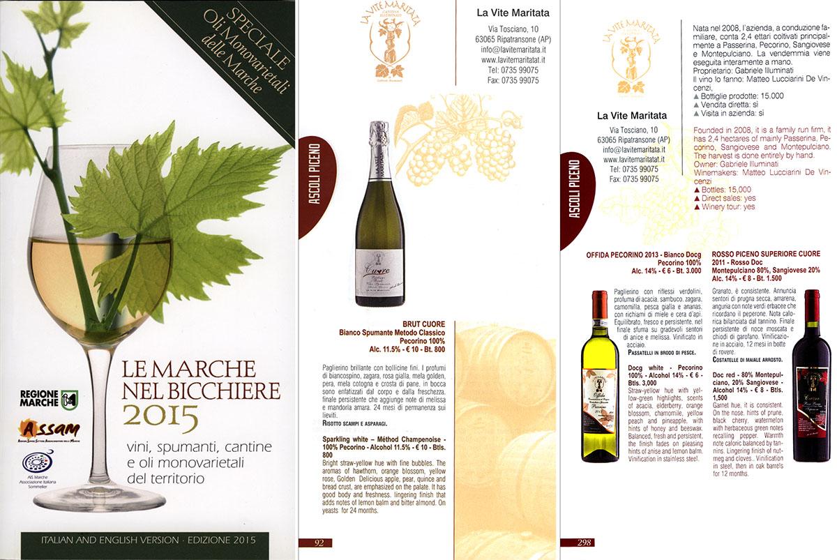 Le Marche nel bicchiere 2015 vini