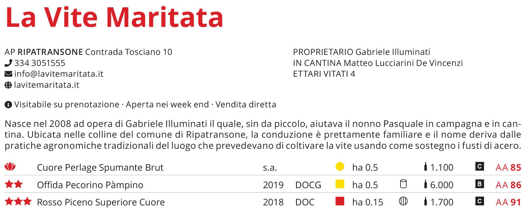 guida_veronelli_2021_la_vite_maritata
